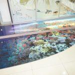 Стеклянный пол с полноцветной печатью. травмобезопасное стекло.